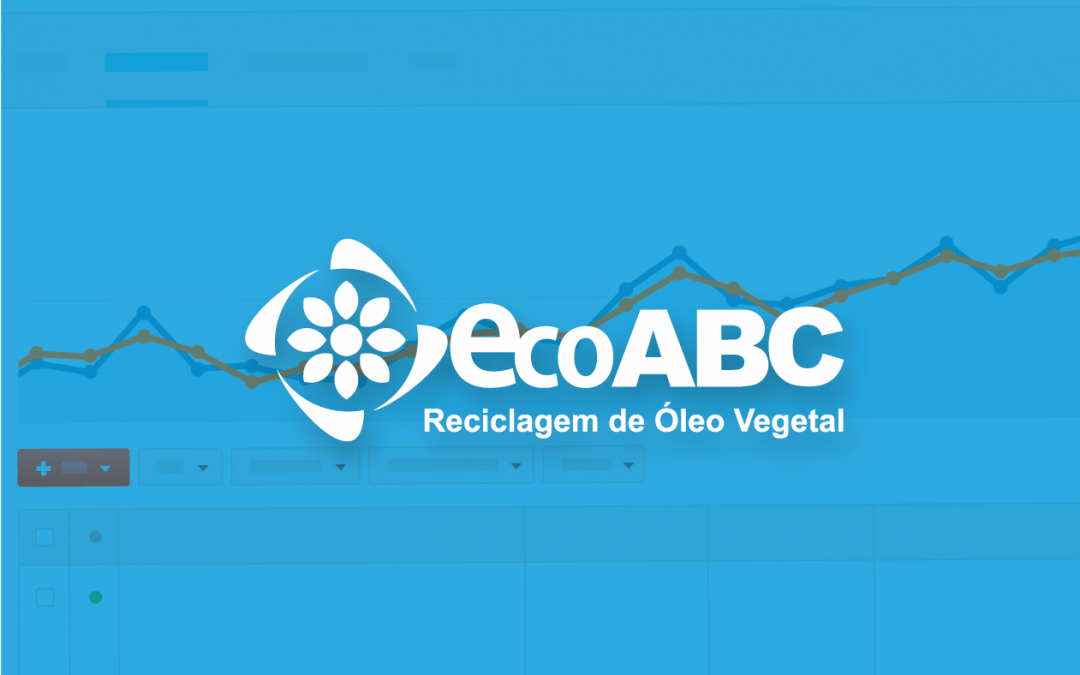 ECOABC: CASE MARKETING DIGITAL COM ADWORDS DE ALTA CONVERSÃO